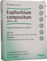 Euphorbium Compositum - Injection Solution