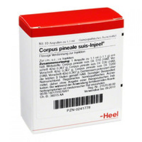 Corpus Pineale Suis Injeel - Ampoules