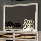 Kaelyn Contemporary Style Mirror , Silver
