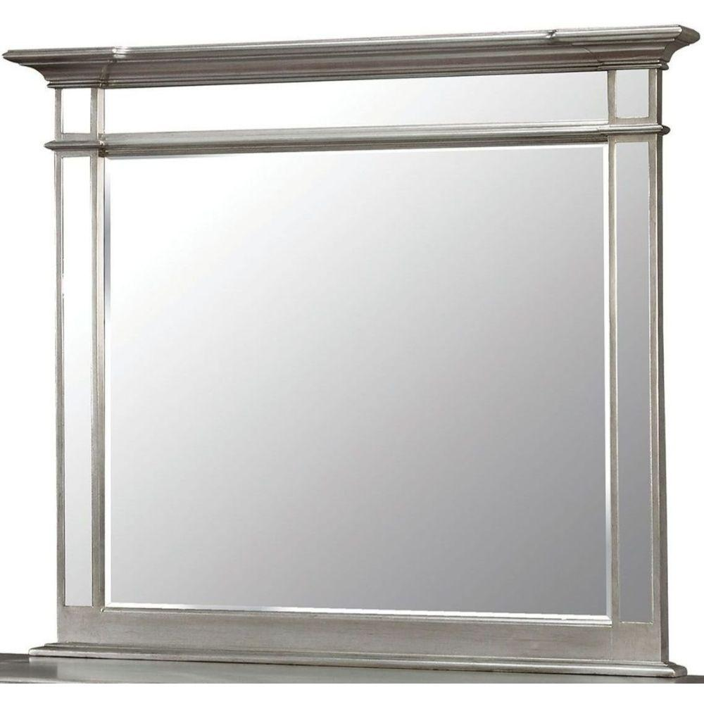 Annie Contemporary Style Mirror , Silver