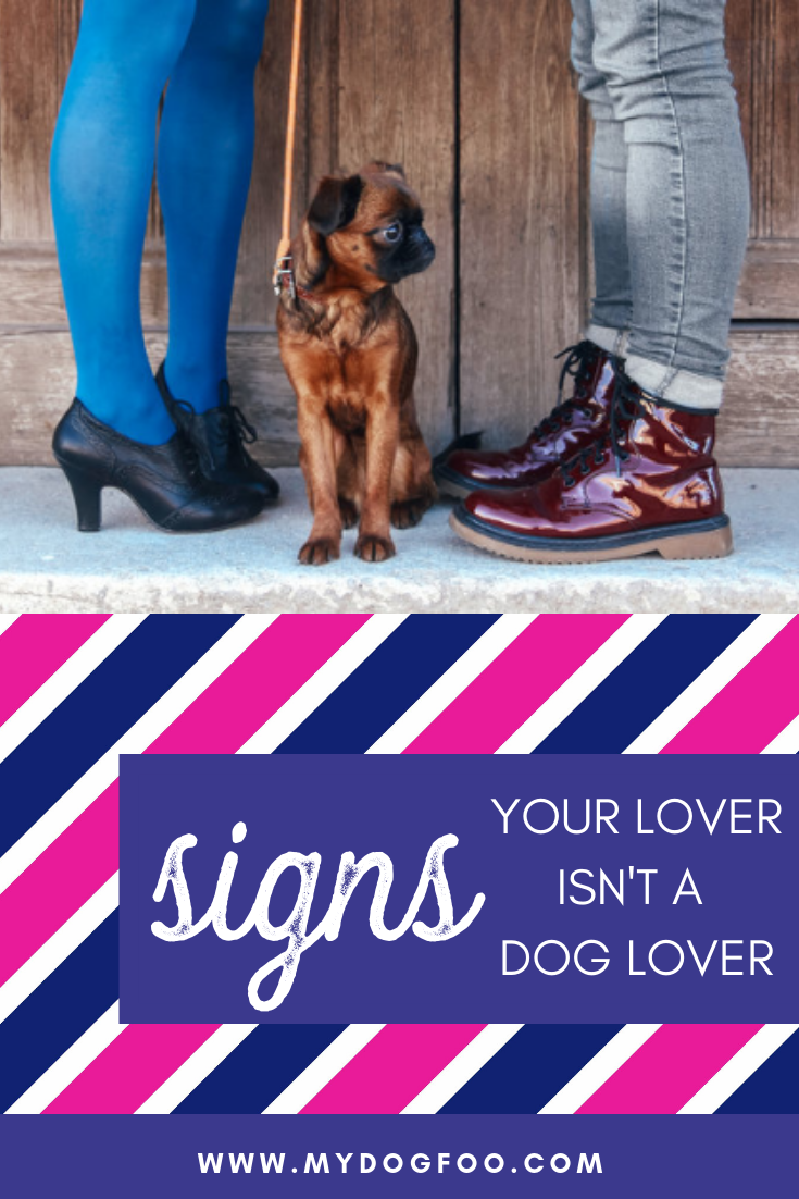 6 Signs Your Lover Isn't a Dog Lover