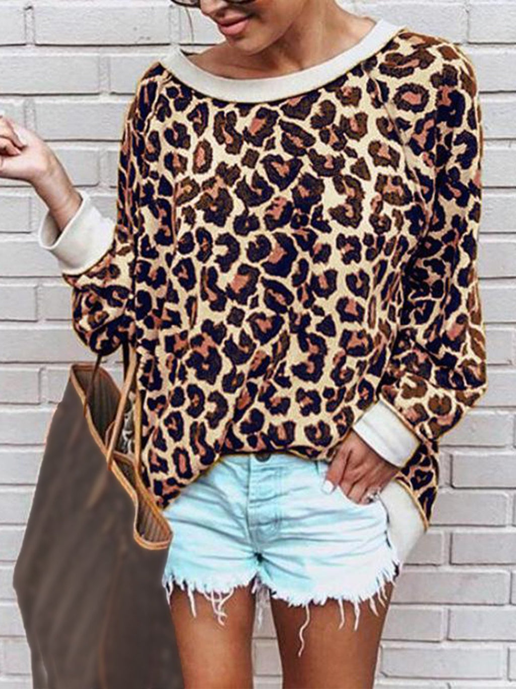 Multicolor Leopard Print Round Collar Long Sleeve Blouse Top