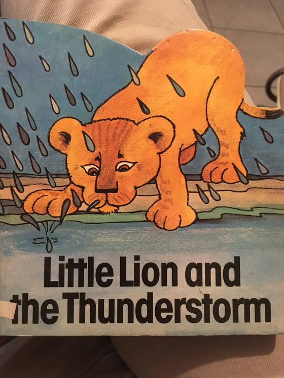 Little Lion and the Thunderstorm - ChezCarpus.com