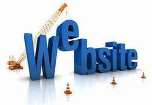 web sit content writer. A one person show brings you the very best.