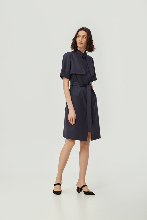 Navy Lapel Dress