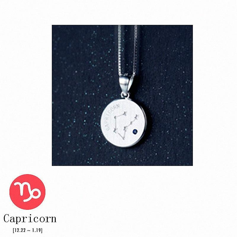 Sterling Silver Zodiac Constellation Pendant Necklace - 925 Real Silver Necklace - Classic Silver Necklace Lux & Rose 12 Capricorn