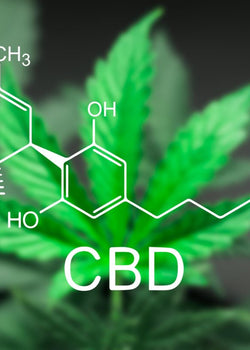 Cannabinoid Research from Around the World