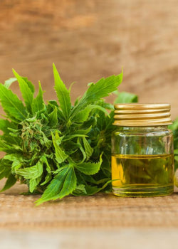What is Hemp Derived CBD?
