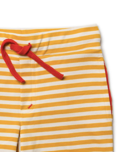 Gold Stripe Beach Shorts | Little Green Radicals - Just Add Milk