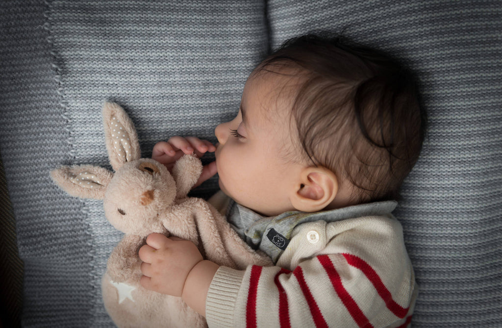 Alfie Rabbit Cloud Comforter | Ragtales - Just Add Milk