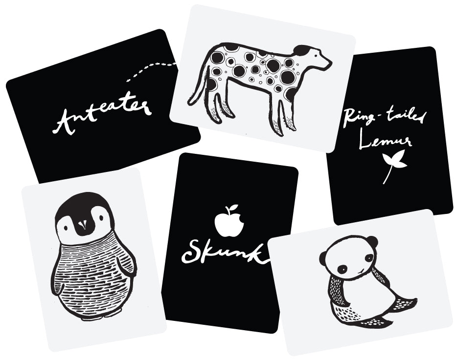 Art Cards For Baby - Black & White Animals | Wee Gallery