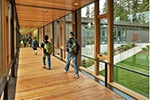 How wood in schools can nourish learning