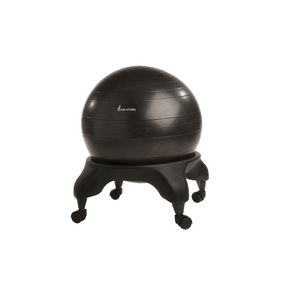 Evolution Ball Chair