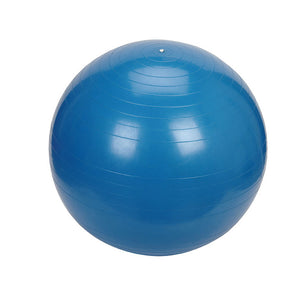 Relaxus Anti-Burst Gym Ball