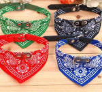 Dog Collar Bandana (adjustable)