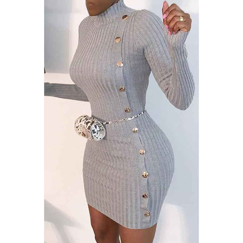 Sexy Skinny Turtleneck Long Sleeve Single Breasted Dress.