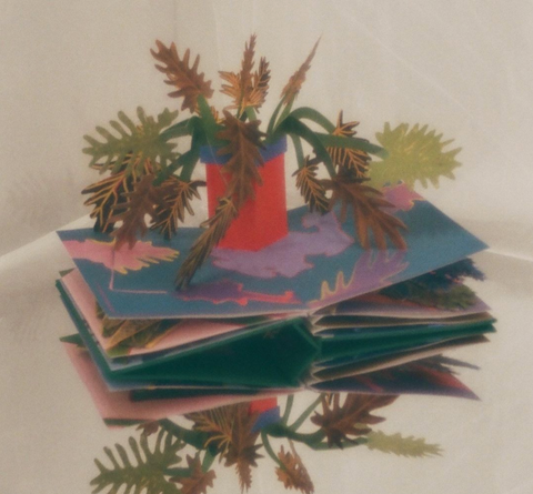 Houseplants Pop-Up Book