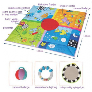 Taf Toys - 4 Seasons Speelkleed 100x100
