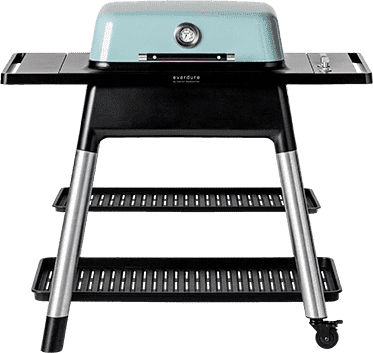 Force 2-Burners Lp Gas Bbq W/stand 24 000 Btu - Mint - Gas Grill