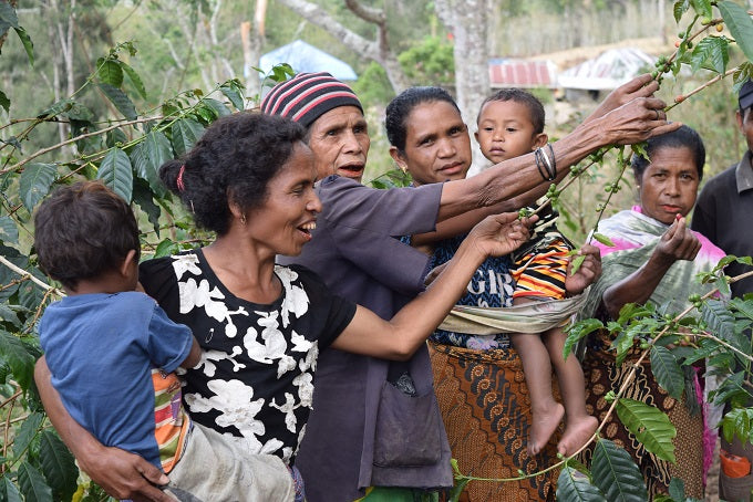 A group of women and children showing off their coffee cherries