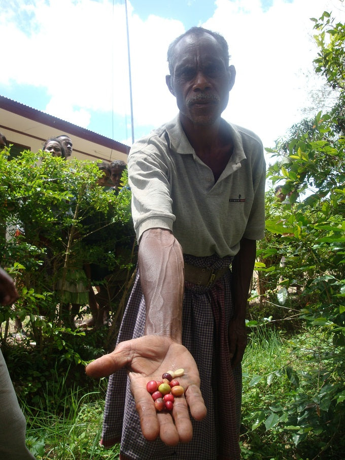 A man holding up coffee cherries to the camera, with people looking on