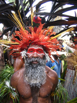 A man wearing a traditional headdress and face paint