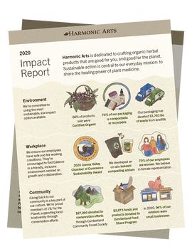 Our Environmental Impact Report