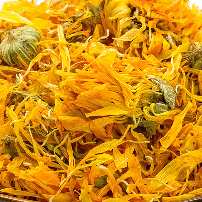 A closeup of loose Calendula Flowers