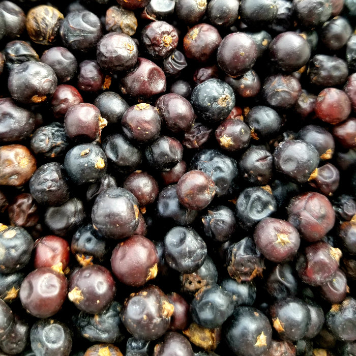 A closeup of loose Juniper Berries