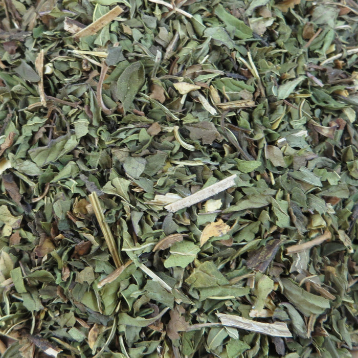 A closeup of loose Peppermint Leaf