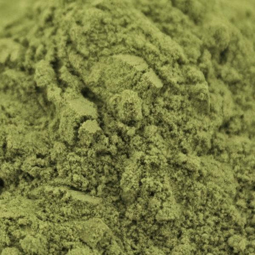 A closeup of Wheatgrass Powder