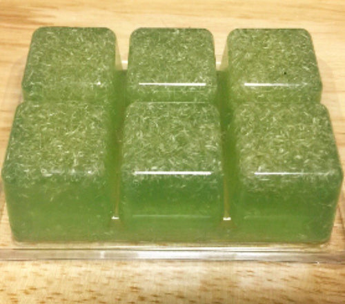 Soap on The Go  Travel Gym Soap