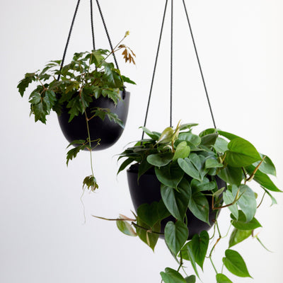 Grace Hanging Pot Black