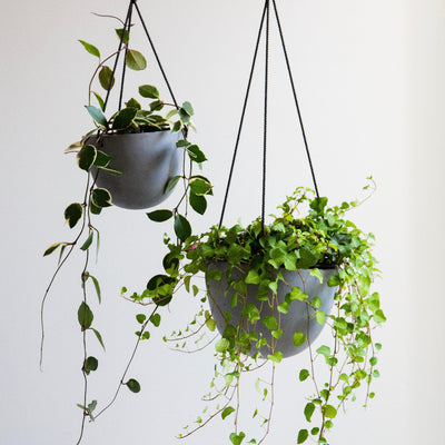 Grace Hanging Pot Grey