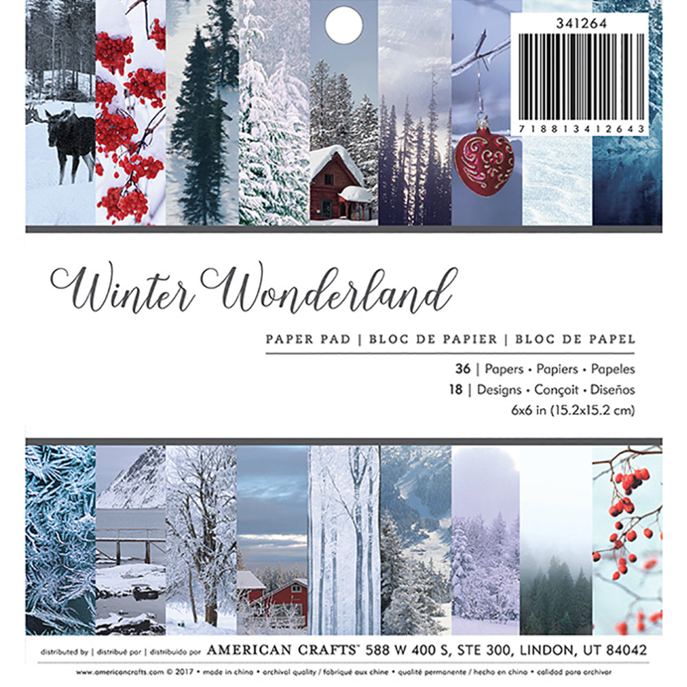6x6 Paper Pad: Winter Wonderland