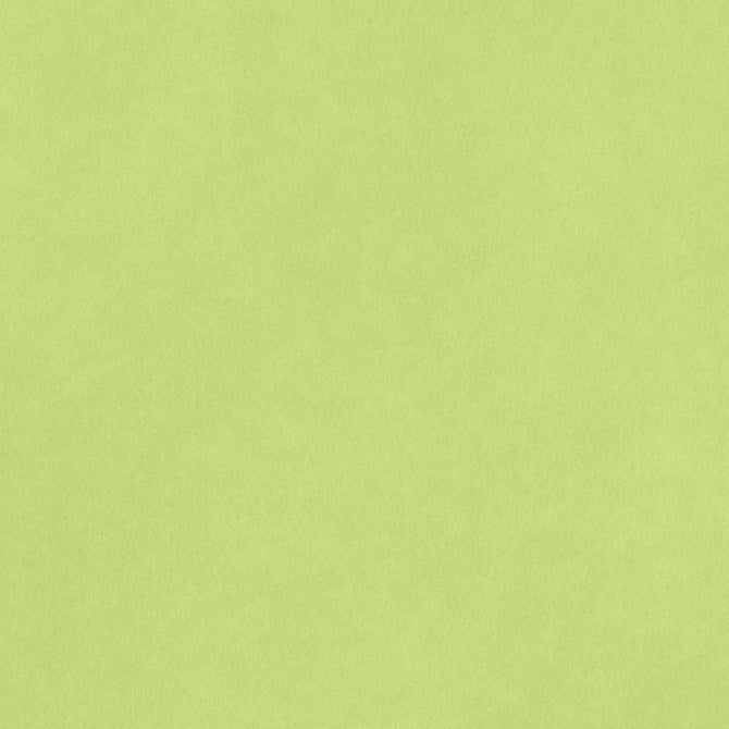 8.5x11 Smooth Cardstock: Key Lime