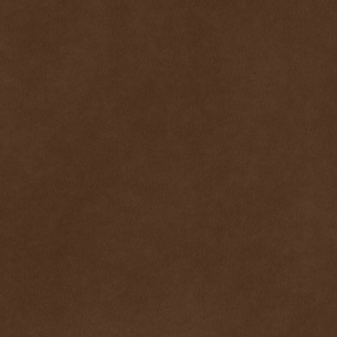 8.5x11 Smooth Cardstock: Coffee