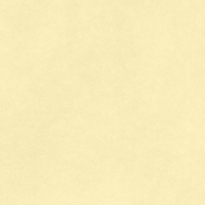 8.5x11 Smooth Cardstock: Vanilla