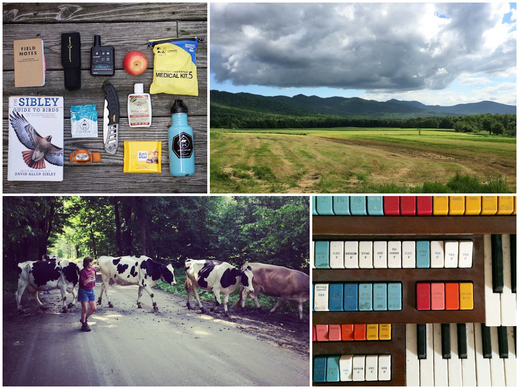 A round-up of Ursa Major's most popular June Instagram photos, including a Vermont landscape and cows.