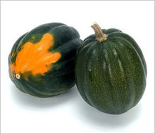 Load image into Gallery viewer, Cucurbita pepo Acorn Squash Table King Squash Plant 25 Seeds #Vegetable