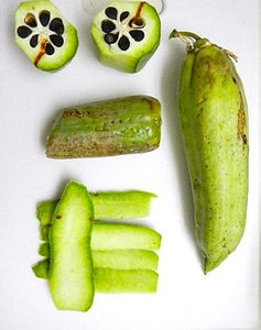 10 Seeds Yucca baccata (Anasazi Supersweet) Sweet Datil Yucca #Succulent
