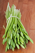 Load image into Gallery viewer, 10 Seeds Asparagus racemosus Satavar Plant #Vegetable