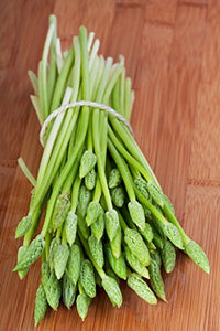 10 Seeds Asparagus racemosus Satavar Plant #Vegetable