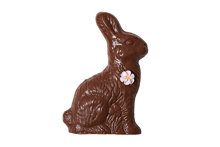 Solid Milk Chocolate Bunny with Flower