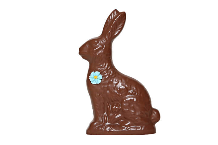 Milk Chocolate Hollow Bunny with Flower