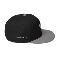 SLIVER.tv Snapback Hat