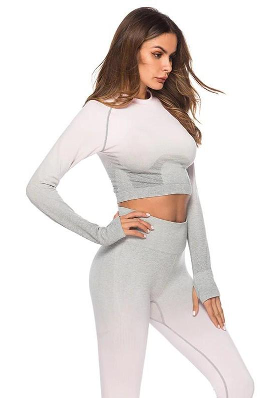 Astoria Seamless Ombre Sleeved Crop - Light Pink/Grey