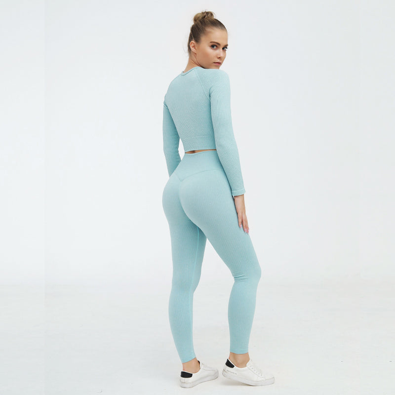 Astoria Seamless Ribbed Sleeved Crop - Aqua