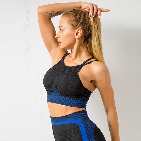 Astoria MOMENTUM Mesh Sports Crop - Sapphire/Black