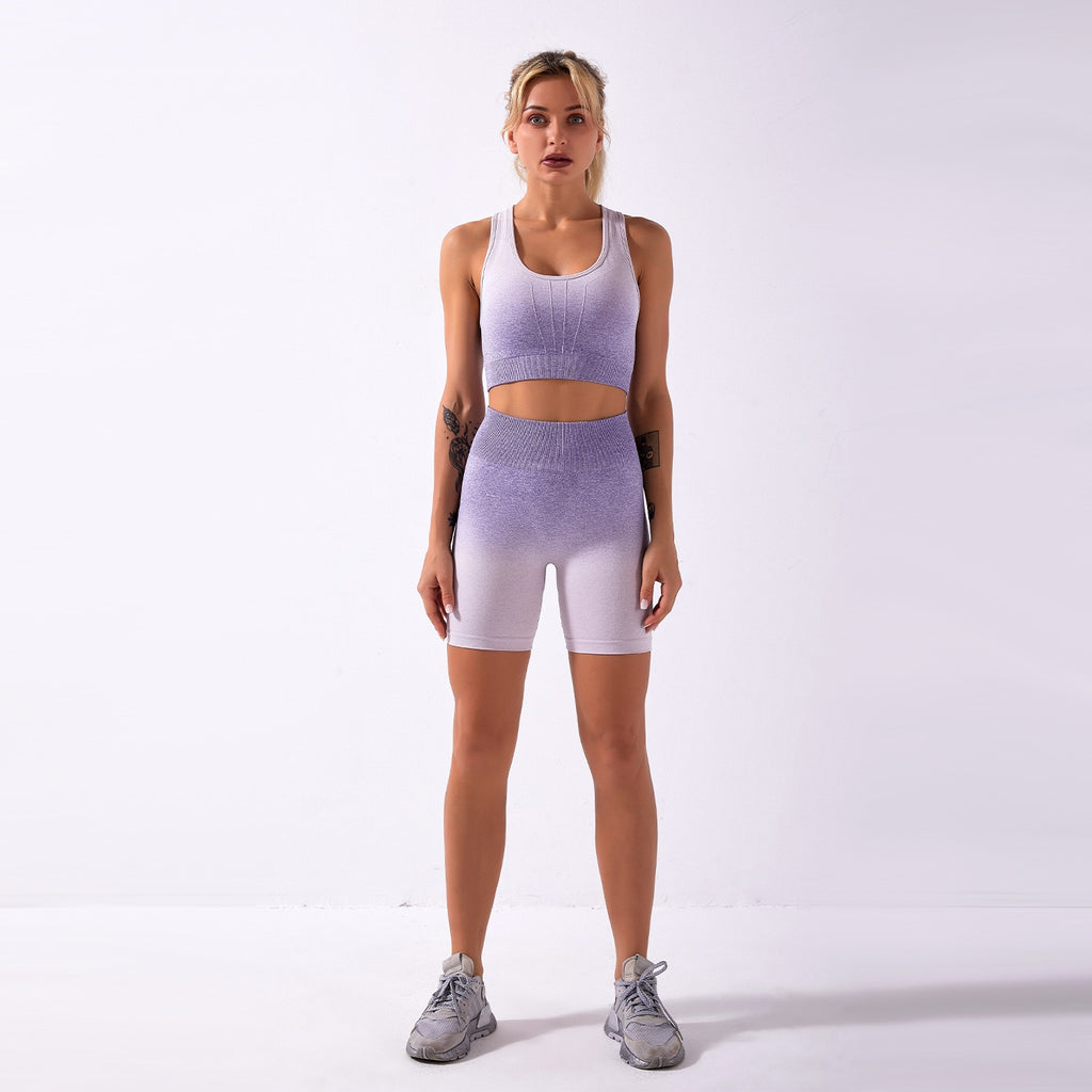 Astoria Seamless Ombre 2.0 Sports Crop - Purple